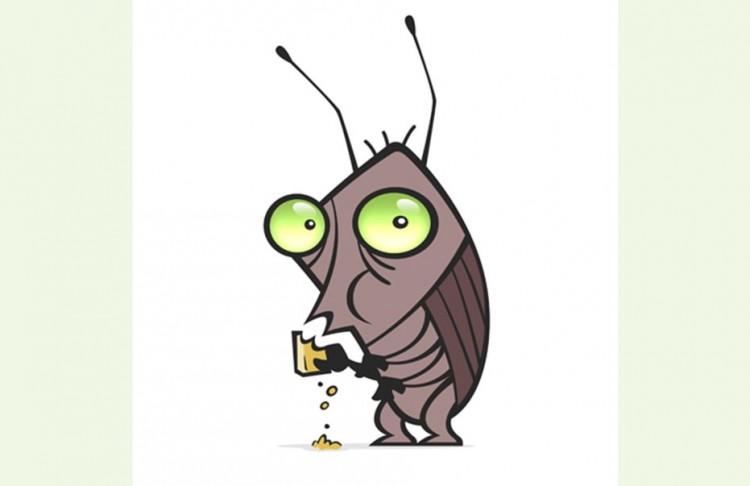 Κατσαρίδες - απαλλαγή