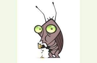 Πώς να απαλλαγείς από τις… κατσαρίδες